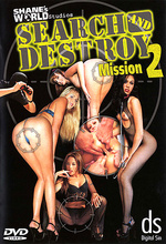 search and destroy mission 2