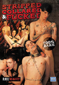 stripped collared and fucked