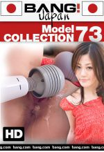 model collection 73